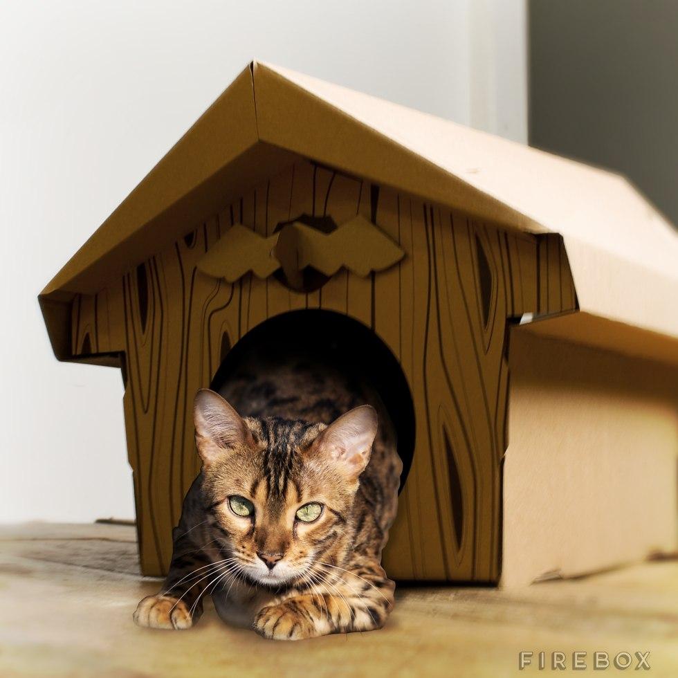 domek dla kota 2