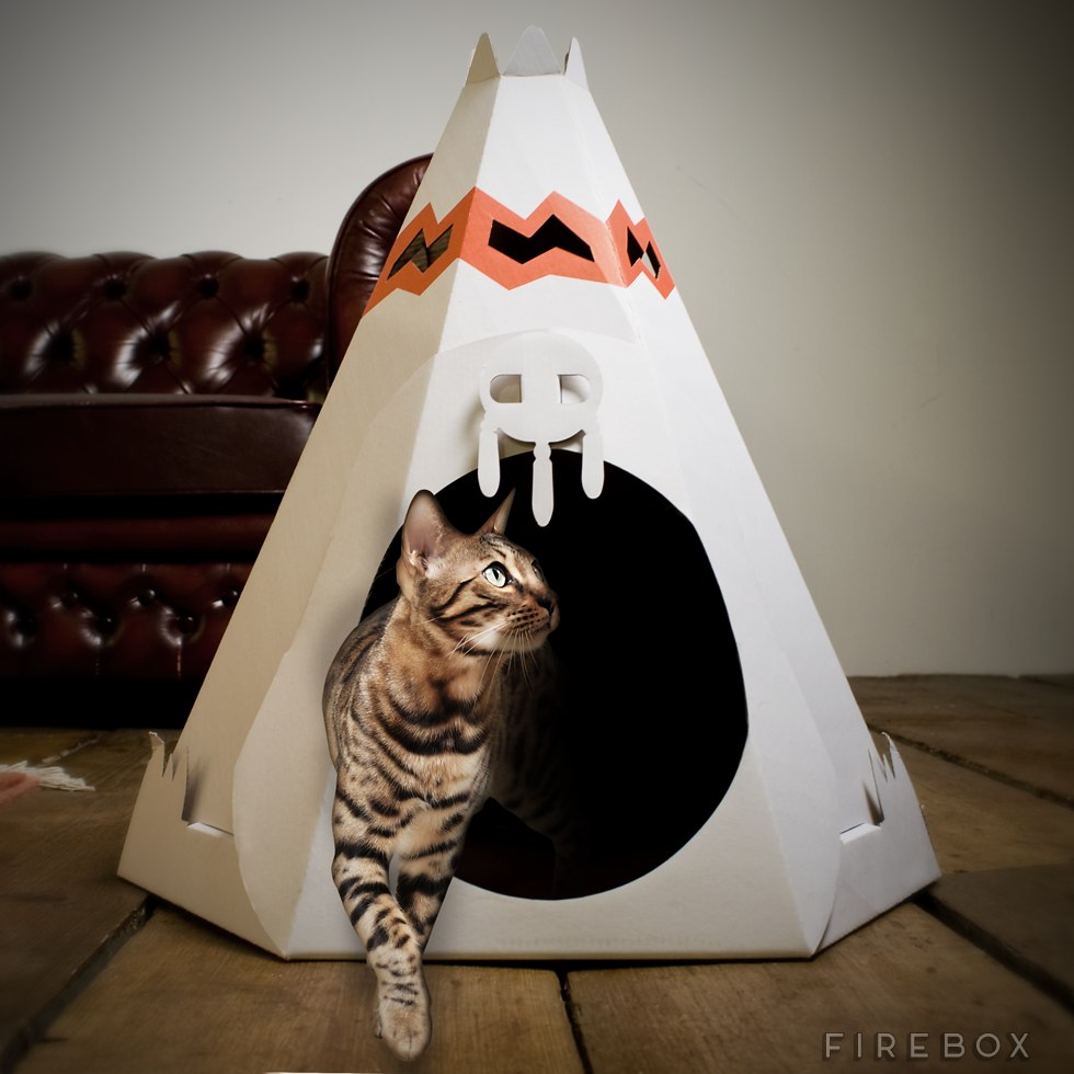 domek dla kota 3