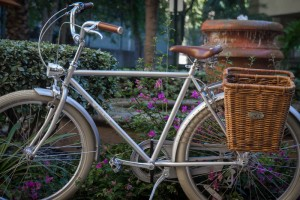 rower-w-stylu-holenderskim-8