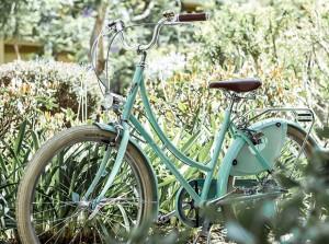 rower-w-stylu-holenderskim-9