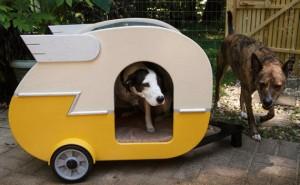 przyczepa-camping-buda-pies-1