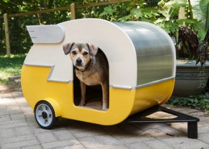 przyczepa-camping-buda-pies-2