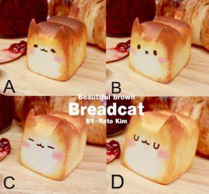 chlebek-koty-zaawki-1