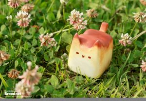 chlebek-koty-zaawki-3