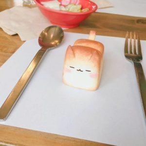 chlebek-koty-zaawki-4